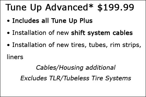 tune up advanced 480x320